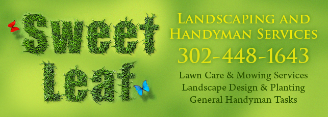 Sweet Leaf Handyman and Lanscaping Services